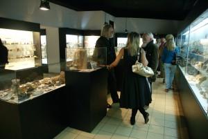 Rozmowa z kamieniem, Muzeum Przyrodnicze w Krakowie